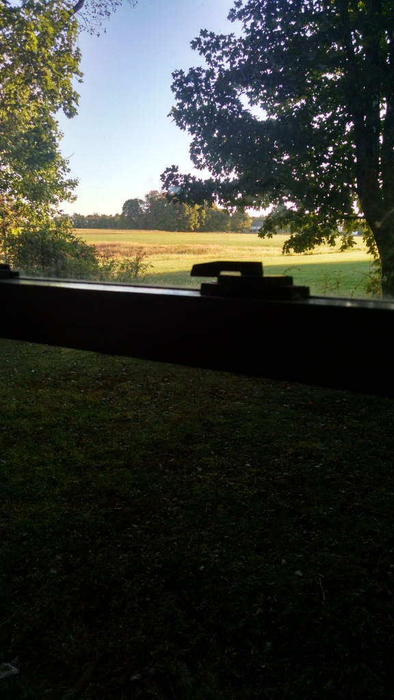 The view, of a Pennsylvania field, out my friend Scott's window